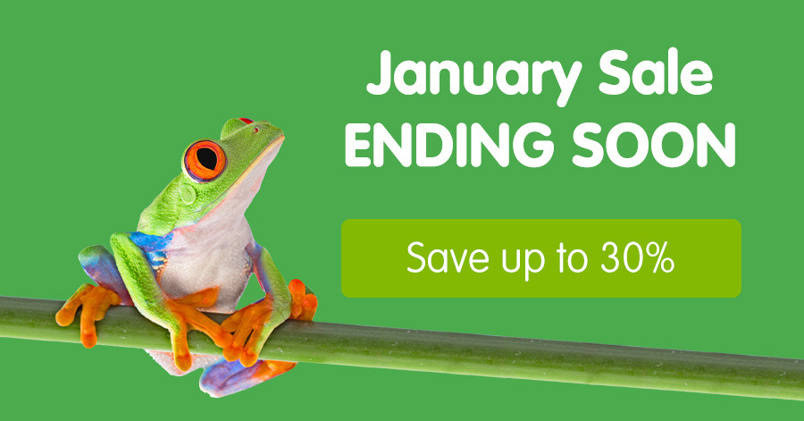 Our biggest January Sale, save up to 30% off trips