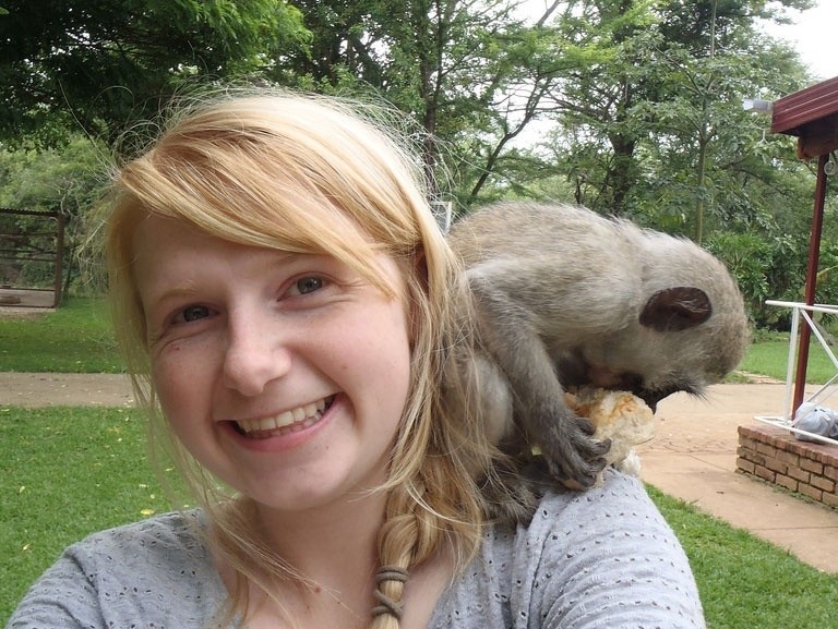Volunteer with Monkeys, Gap Year Ideas
